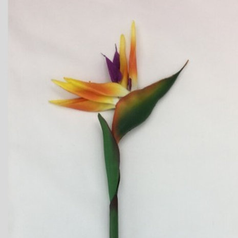 Bird of Paradise Real Touch 90 cm H Orange