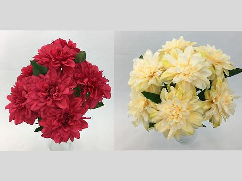 Dahlia Flowers Bush
