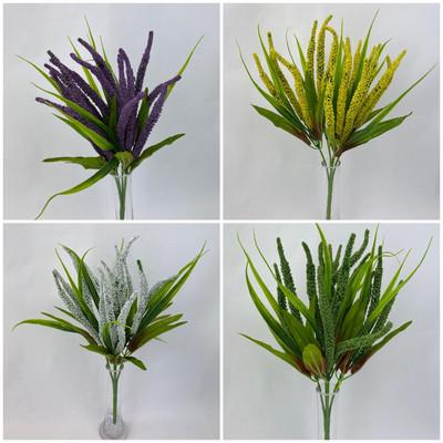 Mini Amaranthus Bunch
