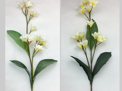 Frangipani Spray X 4/Cream Red/Cream Yellow/100 cm H
