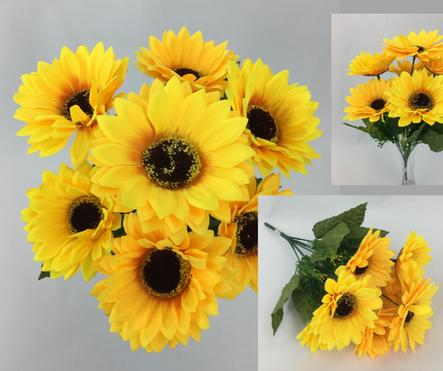 Sun Flower Bush/9