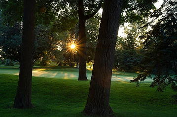 Private Golf Club, Membership Information, Brampton Golf