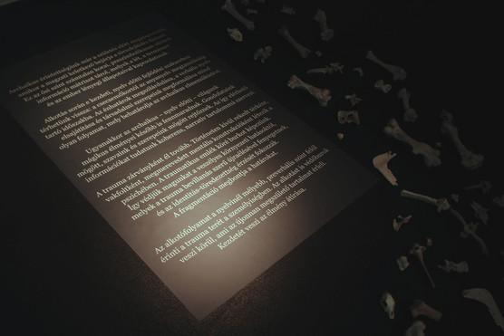 Az installációban szereplő szöveg: Archaikus érintettségünk már a születés előtt megalapozódik, amikor a magzati keletkező bejárja a törzsfejlődés fázisait. Ez az ősi szint számtalan korai, preszimbolikusan sűrített információ mátrixot tárol, melyek a lét, a természet és az ember lényegi állapotaival kapcsolatosak.  Alkotás során e kezdeti, nyelv előtti fejlődési szakaszhoz térhetünk vissza: a csecsemőkortól az anyanyelv megtanulásáig tartó időszakba. Az énhatárok megszilárdulása, a verbális nyelv elsajátítása és társadalmi szerepeink megformálása mind olyan folyamat, mely behatárolja az archaikus elmeműködést.  Ugyanakkor az archaikus – nyelv előtti – világunk mágikus élményei később is fennmaradnak. Gondolataink mögött, szavaink és szerepeink mögött rejtőznek. Az így elérhető információkat tudatunk koherens, narratív tartalommá szervezi.  A trauma zárványként él tovább. Történeten kívül rekedt térként, vakfoltként, megmerevedett mentális konstrukcióként létezik a pszichében. A traumatikus emlék köré burkot képezünk. Így védjük magunkat a veszélyes környezeti hatásoktól, melyek a trauma bevillanás szerű újraélésével fenyegetnek, és az identitás-töredezettség érzését fokozzák. A fragmentáció megbontja a határokat.  Az alkotófolyamat a nyelvinél mélyebb, preverbális szint felől érinti a trauma terét a személyiségben. Az alkotást is védőburok veszi körül, ami az újonnan megszülető tartalmat érleli. Kezdetét veszi az élmény átírása.