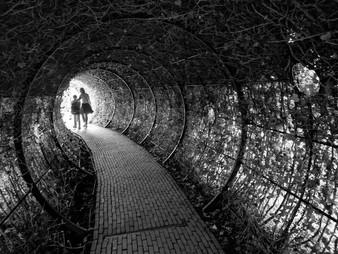 Alnwick Castle Poison Gardens: 5 of 5