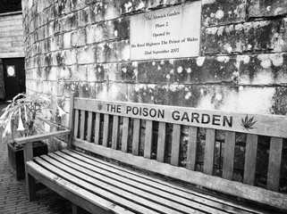 Alnwick Castle Poison Gardens: 1 of 5