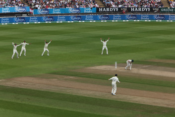 1st Ashes Test, Edgebaston, Day 4: 3 of 4