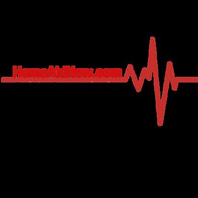 HomeAidNow.com Transparent LOGO.png
