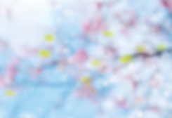 image_blurred-spring-background-with-yel