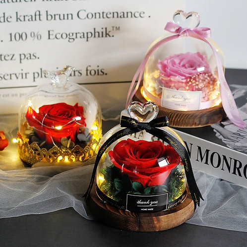 Beauty And The Beast Preserved Valentines Day Gift  Exclusive Rose In