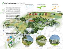 Public School Revitalized