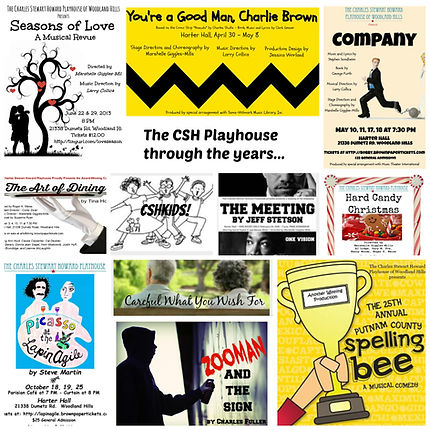 The CSHPlayhouse through the years.