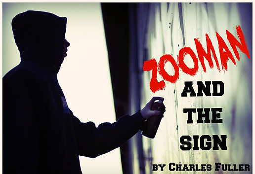 Zooman and the Sign by Charle Fuller