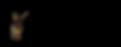 CSHKids logo.png