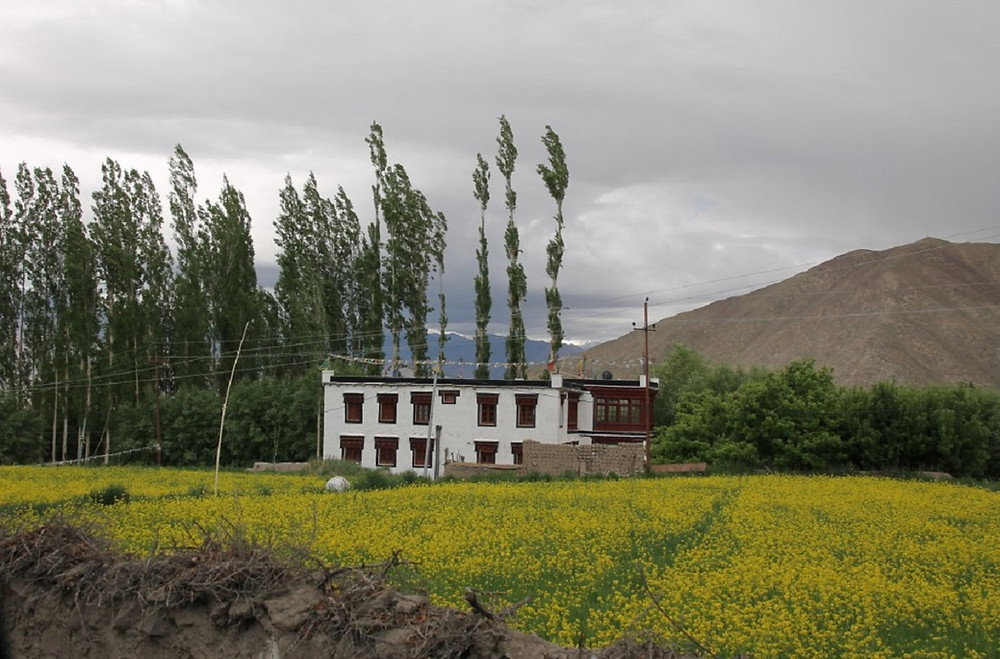 Typical Ladakhi Home