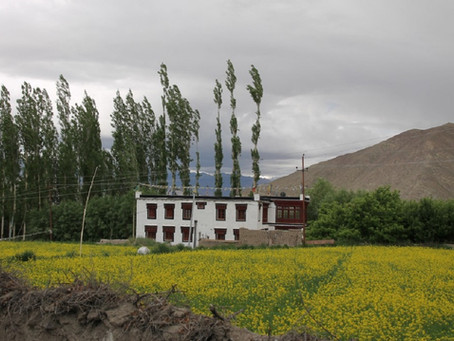 The Magnificence of Ladakh, India