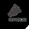 logo-roma-cityrumors-square.png
