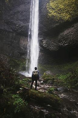 wilderness-598308_1280.jpg