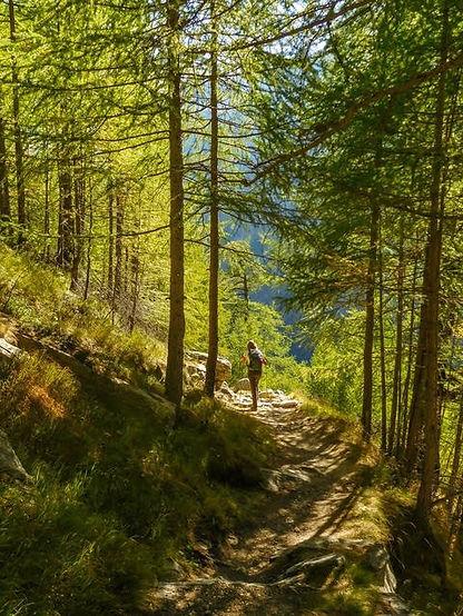 Solo hiker.jpg