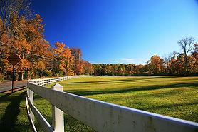 WPT Pine Creek Park.jpg