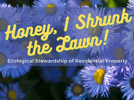 Honey, I Shrunk the Lawn: Ecological Stewardship of Residential Property