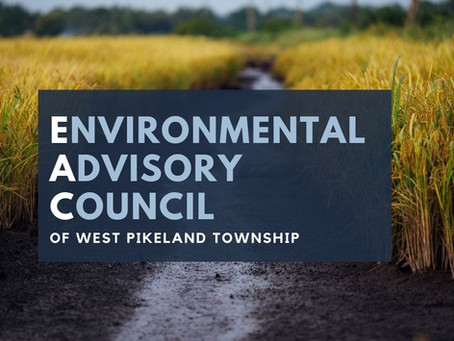 Environmental Advisory Council Meeting - August 3, 2021