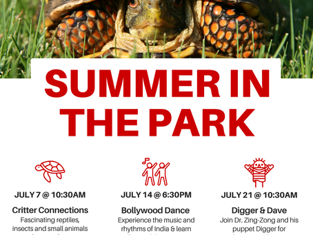 Summer in the Park Series