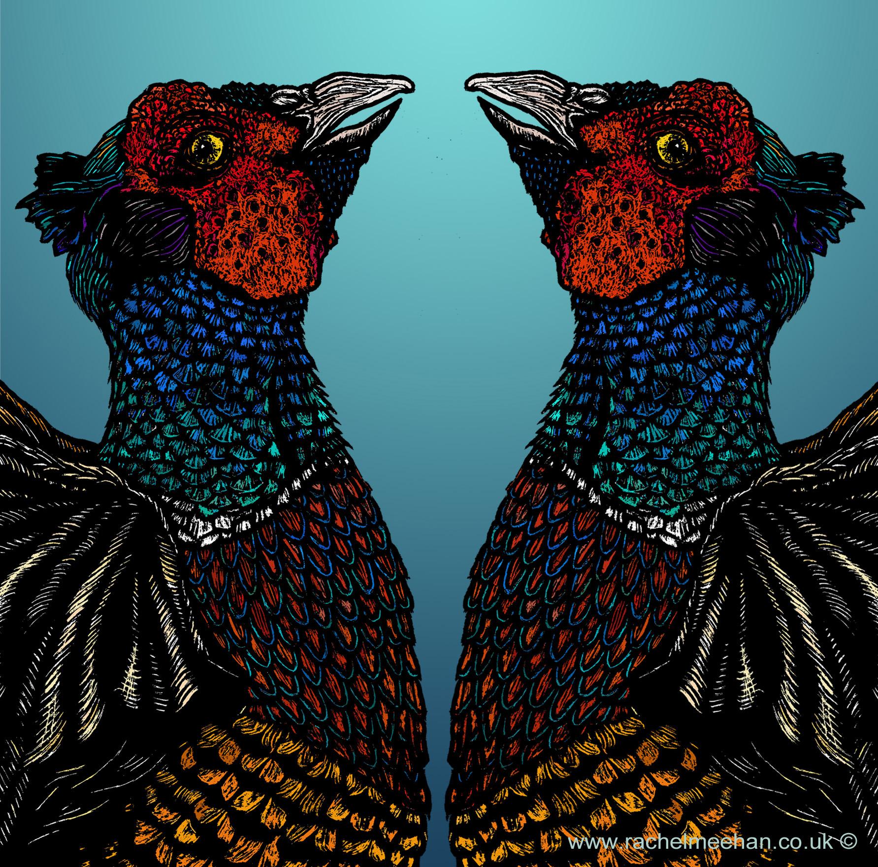 Common Pheasants- Rivals small