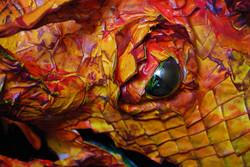 Dragon Close Up