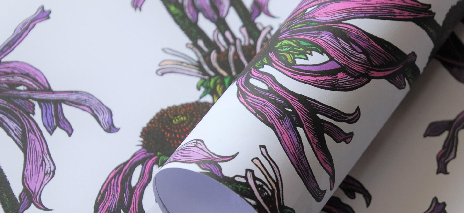 Echinacea Gift Wrap