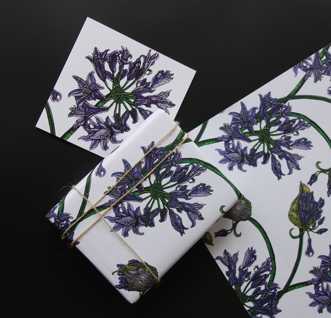 Agapanthis Gift Wrap and matching Card
