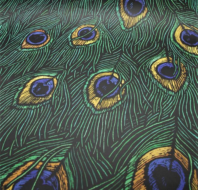 Peacock gift wrap