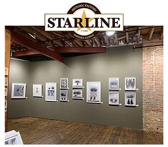 Starline Web.jpg