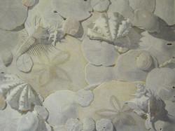 12-28 White on White Michiyo Fullerton