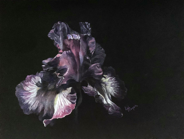 Lynne Hagen