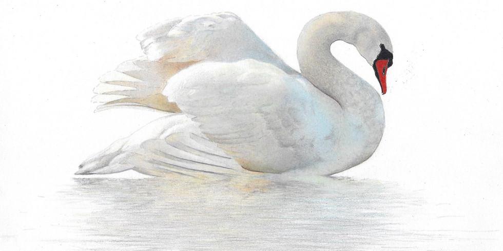 Radiant Swan SOAR Workshop