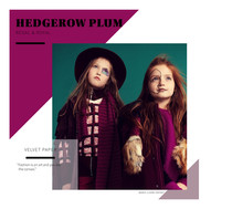 Headrow_Plum_–_Colour_Trend__Marie_Clair