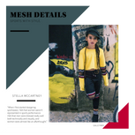 Mesh_Details__–_Sports_with_Style.png