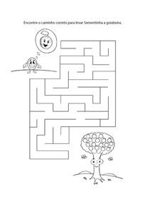 labirintoSementinhaGoiabeira.jpg