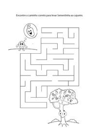labirintoSementinhaCajueiro.jpg