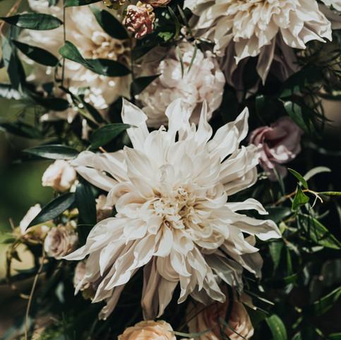 fleur de t close up detail