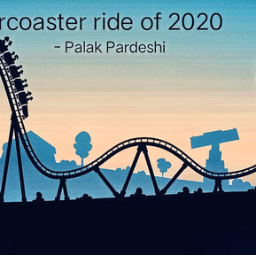 The rollercoaster ride of 2020
