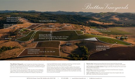 Brittan-Vineyards-Aerial.jpeg