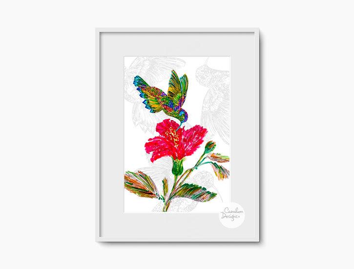 Hummingbird & Flower - Unframed