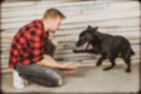 Deze zwarte labrador werd helemaal enthousiast van zijn baasje. Hierdoor zijn er ontzettend leuke en spontane foto's van hond met baas ontstaan. Nikki bied dus ook dierenfotografie aan. A playful photograph of a black labrador and he's boss. Made in the photo studio.