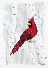 Cardinal Flurries