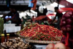 Malaysian Chilis