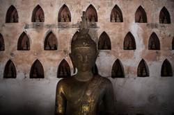 Buddha Portrait