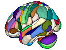 BrainAreas Credit Lead-DBS.jpg