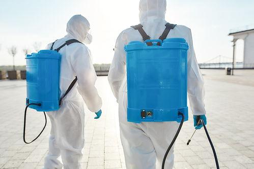 Electrostatic Sprayer.jpg