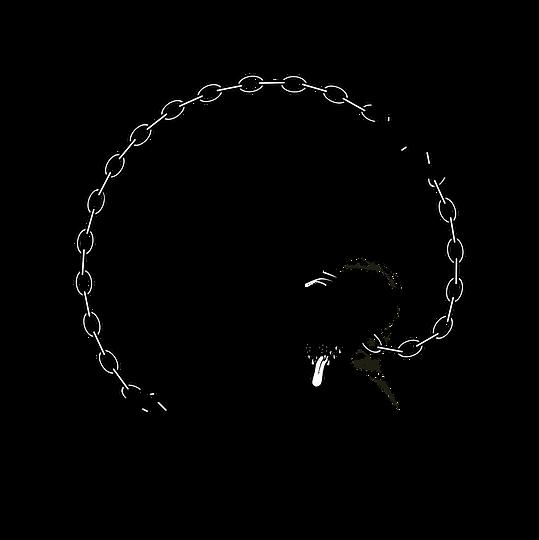 PD - Logo - Transparant BG (no texture).